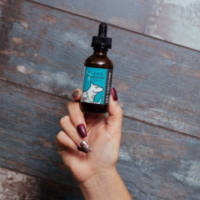 Pet CBD tincture from Axis