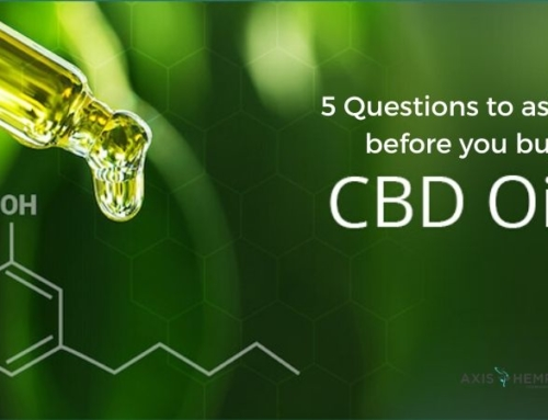 5 Questions to ask before you buy CBD oil